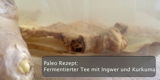 paleo rezept fermentierter tee mit ingwer und kurkuma blogsuperhumanoid. Black Bedroom Furniture Sets. Home Design Ideas