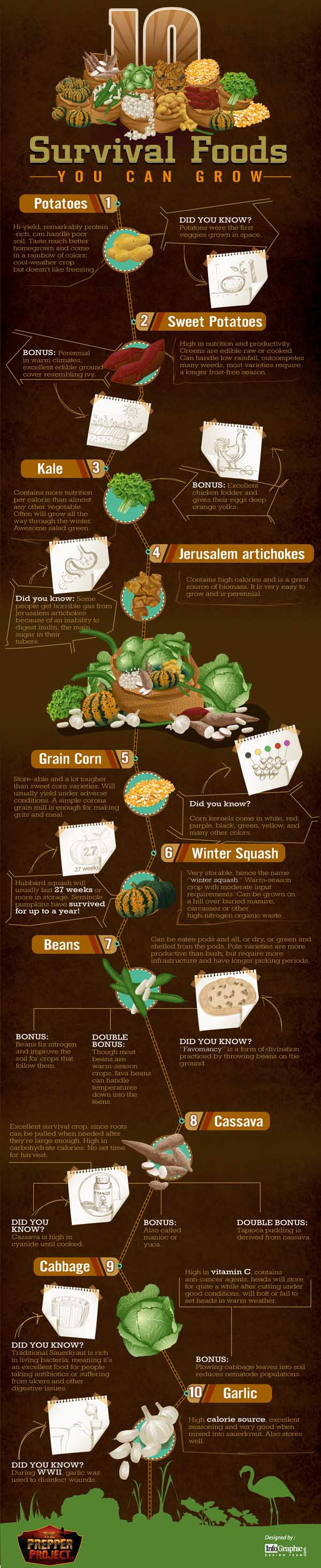 10 Survival Foods You Can Grow Infographic 10 Best Survival Foods