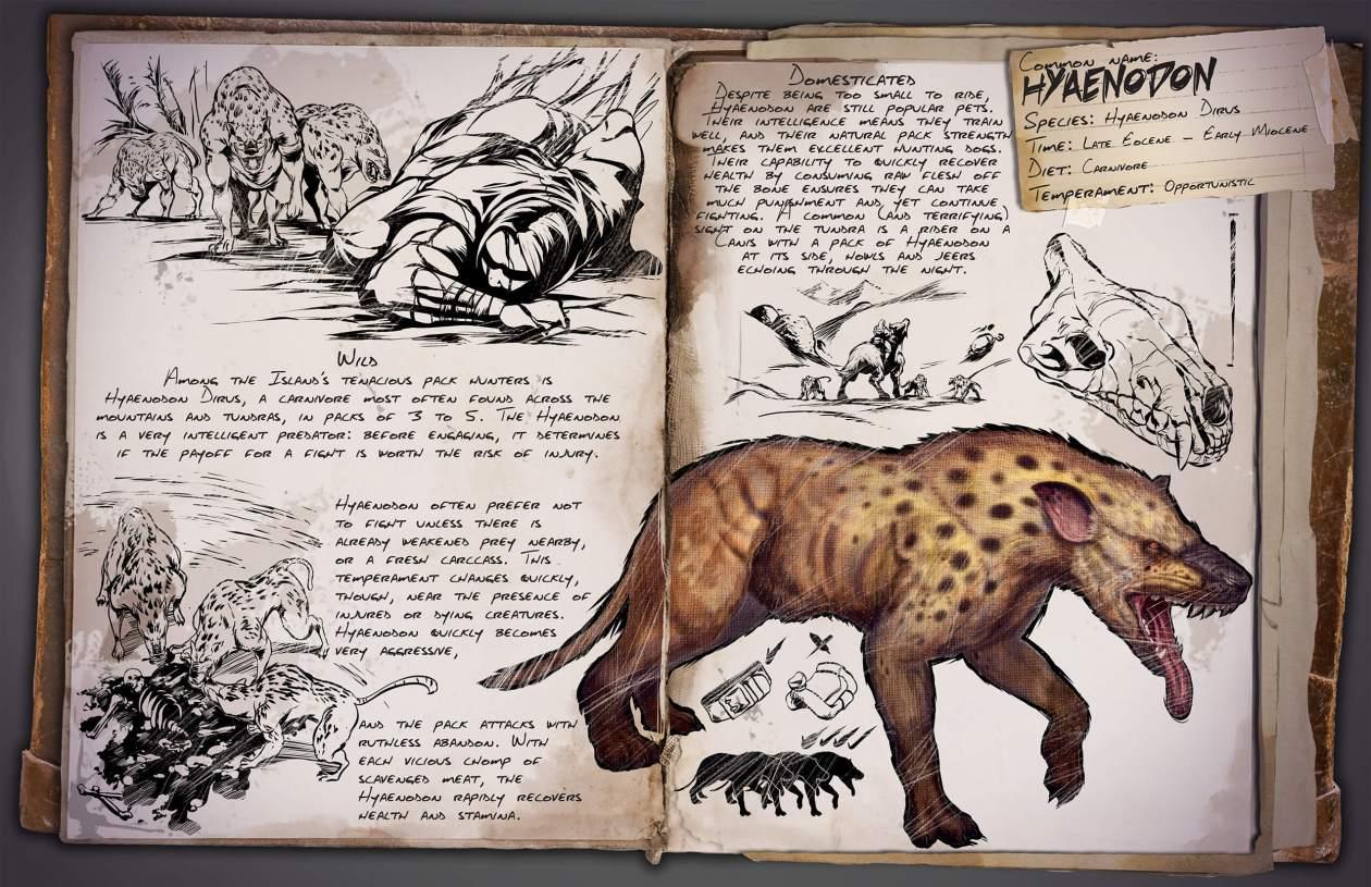 Hyaenodon_Dossier