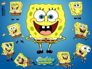 Spongebob study