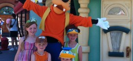 Taking a big family to Disneyland