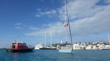 Pilot boat, cruise ship, 200' sailboat and Stella Blue