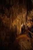 Hastings Caves, Tasmania