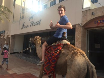 Riding A Camel In Downtown Aqaba