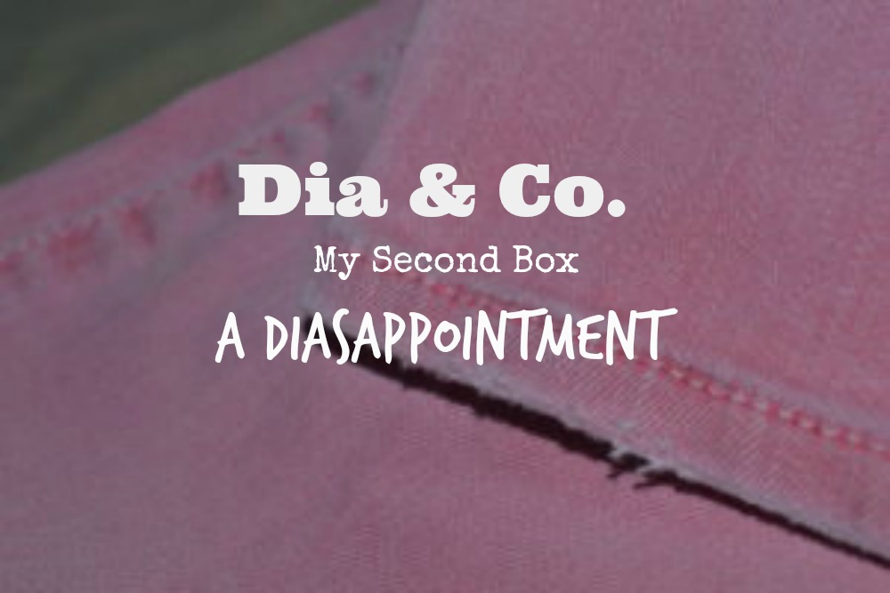 Dia & Co. Review June 2016:  A Diasappointment