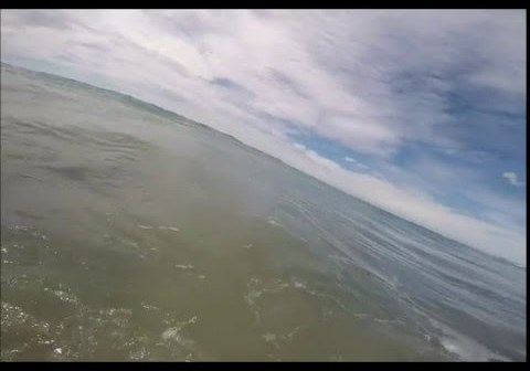 When you're swimming with your daughter and a shark swims past…