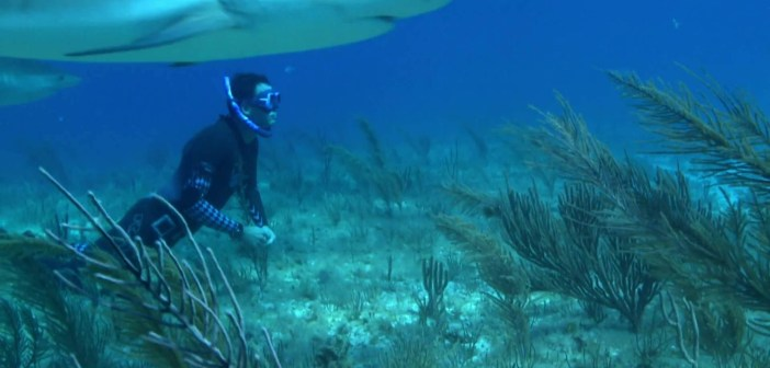 """Vision Films Releases """"On a Long Breath"""" Freediving Documentary"""