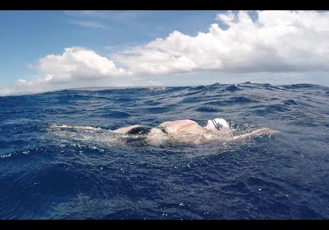 Woman survives shark scare during solo swim of Kaiwi Channel