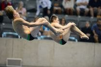 KNOXVILLE, TN - August 5, 2014: Synchro Gray/Callahan during the 2014 USA Diving Age Group and Junior National Event at Allan Jones Aquatic Center in Knoxville, TN. Photo By Matthew S. DeMaria