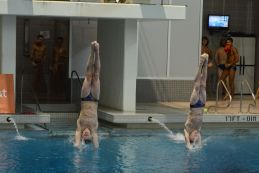 KNOXVILLE, TN - August 5, 2014: Synchro Showalter/Cabobianco during the 2014 USA Diving Age Group and Junior National Event at Allan Jones Aquatic Center in Knoxville, TN. Photo By Matthew S. DeMaria