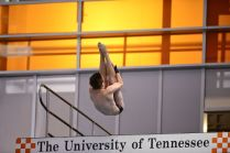 KNOXVILLE, TN - July 31, 2014: Kimble Mahler dives of the Platforms during the 2014 USA Diving Age Group and Junior National Event at Allan Jones Aquatic Center in Knoxville, TN. Photo By Matthew S. DeMaria