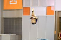 KNOXVILLE, TN - July 31, 2014: Paige Burrell dives from the 1 meter springboard during the 2014 USA Diving Age Group and Junior National Event at Allan Jones Aquatic Center in Knoxville, TN. Photo By Matthew S. DeMaria