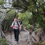 Walking Gomera
