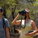 På safari i ørkenland.