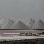 Bonaires eksportvare #1, salt.