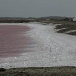 Saltinnsjø, ikke spør hva det rosa er...
