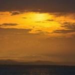 Flytende gull over regnskogen i Panama...