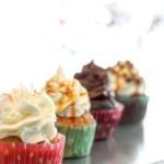 Specialty+Cupcake+Shop+NY