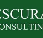 Logo_escura_consulting