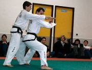Taekwon-do zelfverdediging - Hosinsul