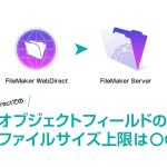 WebDirectオブジェクトフィールドの制限について