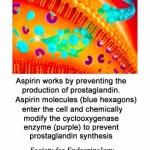 wuthrich1981-prostaglandins