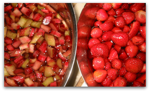 bowls of chopped rhubarb and cleaned strawberries
