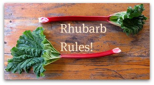 Fresh Rhubarb Rules