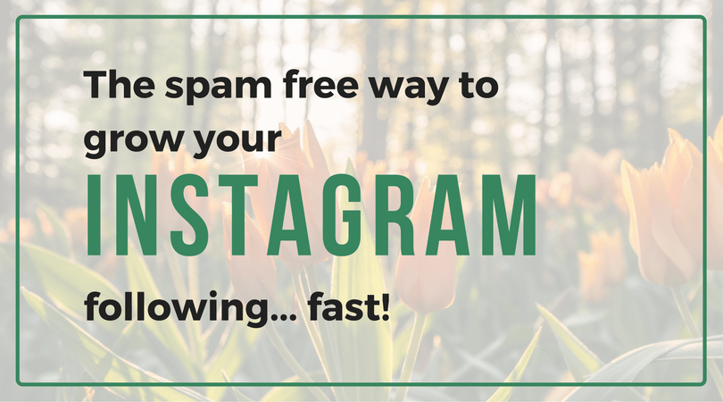 The Spam-Free Way to Grow Your Instagram Following FAST