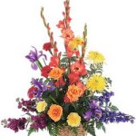 Rainbow Basket from Tammys Floral