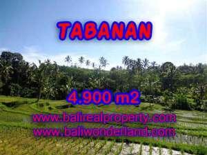 TANAH DIJUAL DI TABANAN CUMA RP 420.000 / M2