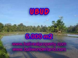 Peluang Investasi Properti di Bali - Jual Tanah murah di UBUD TJUB413