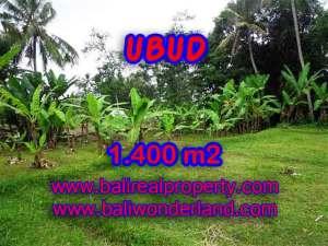 TANAH DIJUAL DI BALI, MURAH DI UBUD RP 1.000.000 / M2 - TJUB419 - INVESTASI PROPERTY DI BALI