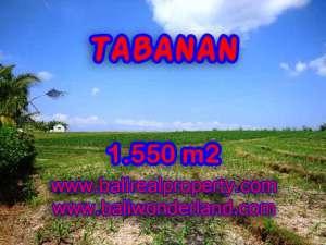 DIJUAL TANAH MURAH DI TABANAN BALI TJTB134 - KESEMPATAN INVESTASI PROPERTY DI BALI