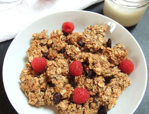 cranberry granola 6