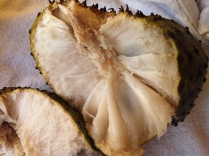 The inside of the Soursop. Lynda Lee picked this one out for us and it was perfect.  The texture was creamy and the flavor was jsut the right balance of sweet and sour.  There are seeds in the pulp, but they are hard enough that you'll catch them before you bite through them.