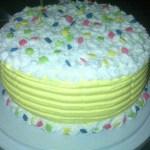 Sprinkles cake1