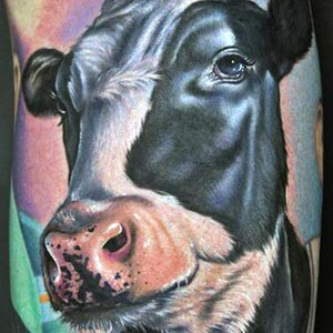 Real Looking Cow Tattoo of 15