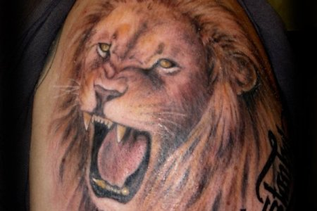 lion tattoo design td24072