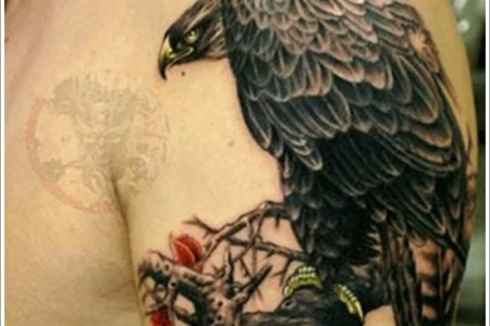 eagle tattoo designs 10