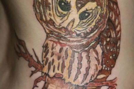 owl tattoo 5