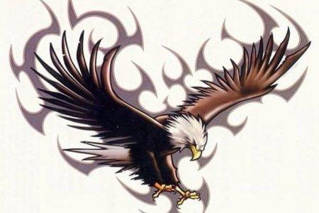 image of eagle tattoo tb1079