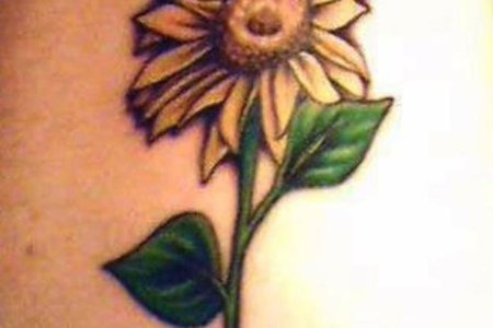 simple sunflowertattoo tb1264