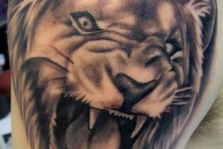lion tattoo meaning 718x1024