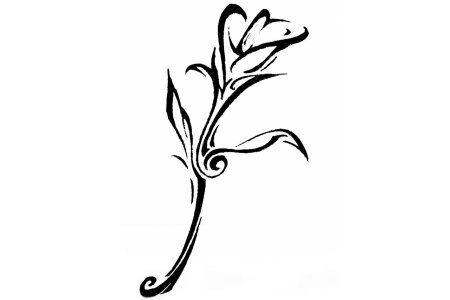 tribal lily tattoo designs
