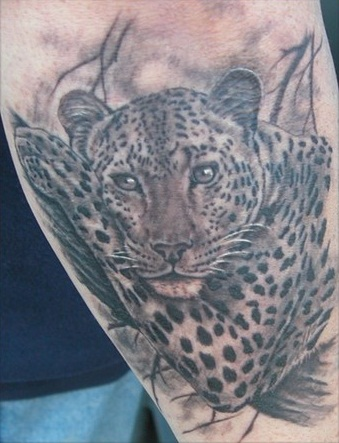 Jaguar Tattoos Designs, Ideas and Meaning of 10 by Justin