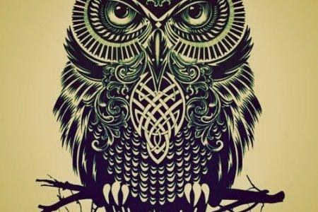 black owl tattoo design