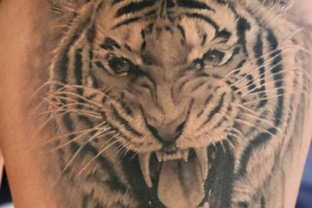 amazing grey ink tiger head tattoo