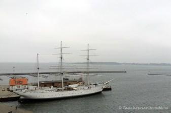 Rundgang Ozeaneum Stralsund