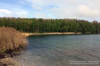 Südbecken, Tauchen im Kulkwitzer See, Tauchen in Sachsen